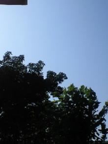 今日のami-SBCA0001.jpg