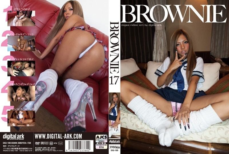 BROWNIE 17 つばさの購入ページへ