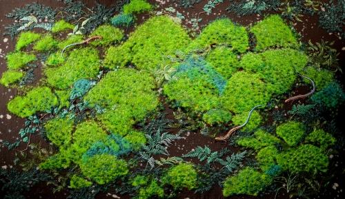 作品Moss Garden