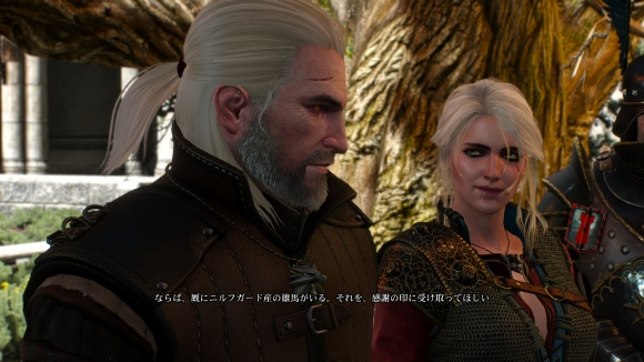The Witcher 3: Wild Hunt ending