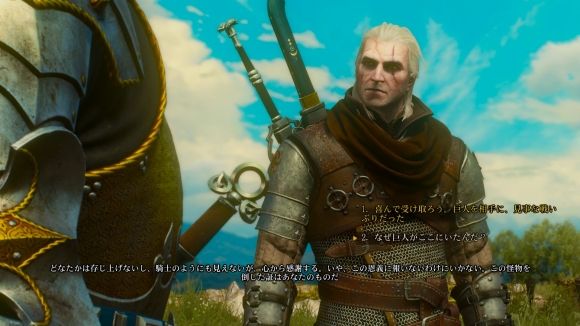 The Witcher3: Wild Hunt