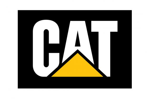 rogo-2016-CAT.png