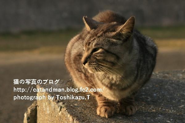 IMG_0972s.jpg