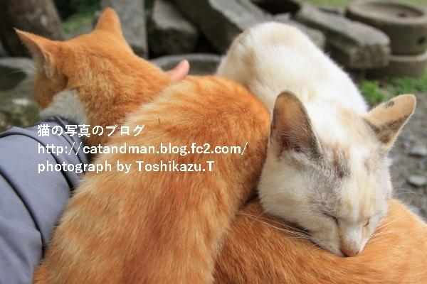 IMG_4091s.jpg