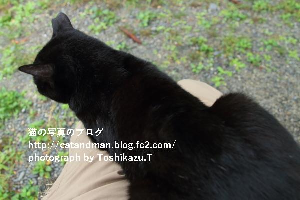 IMG_4971s.jpg