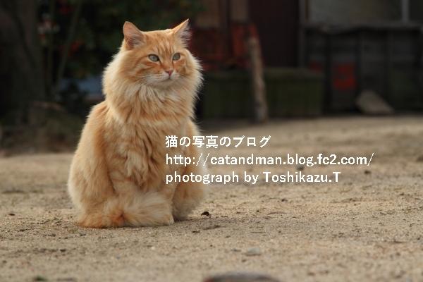 IMG_6691x.jpg