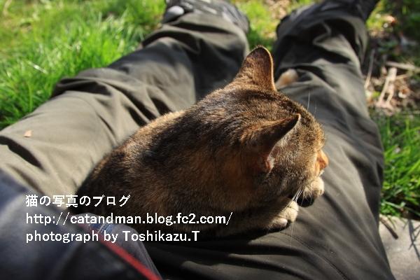IMG_8715s.jpg
