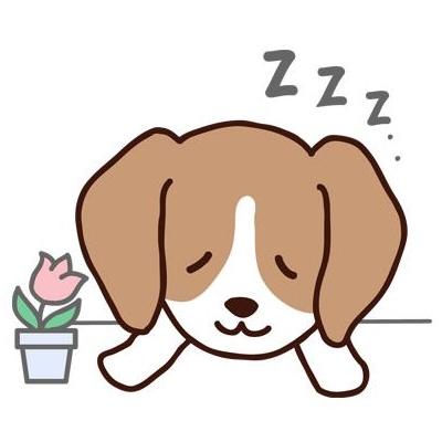 寝太郎アイコン