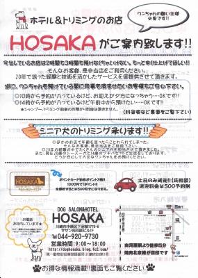 「DOG SALON HOSAKA」2017年1月~3月のキャンペーンのお知らせ