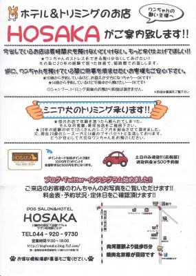 「DOG SALON HOSAKA」2017年4月~6月のキャンペーン
