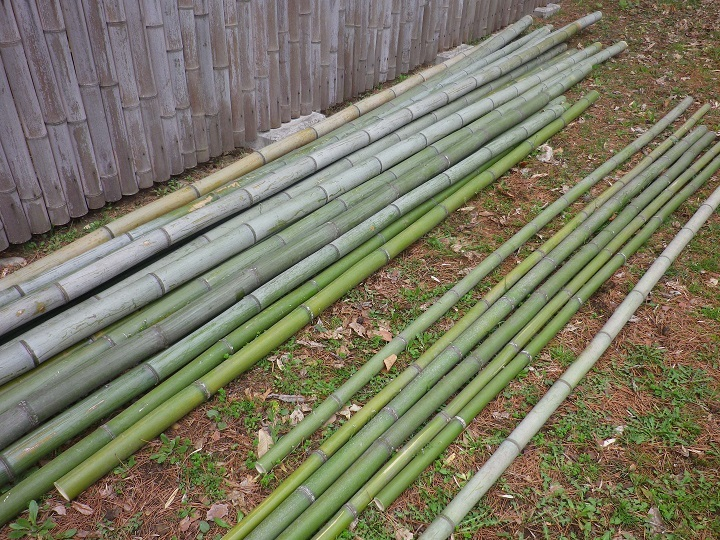 蓼科笹類植物園【笹離宮】にて竹のオブジェ作りにいってきました