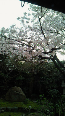 大阪・豊中・フラワースタイリングとやまとなでしこさろんEDUCE