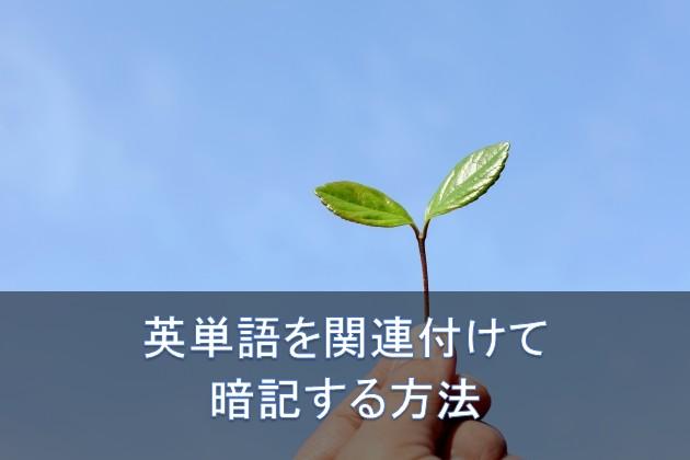 2017y02m18d_112459865.jpg
