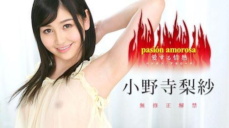 【カリビアンコム】パシオン・アモローサ ~愛する情熱 5~ 小野寺梨紗