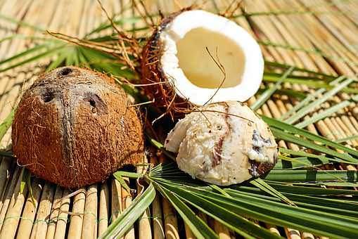 coconut-1501392__340_mini_mini_mini_mini.jpg