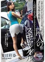隣人のスキャンダル~近所の美人妻とSEXをする方法~ 夏目彩春
