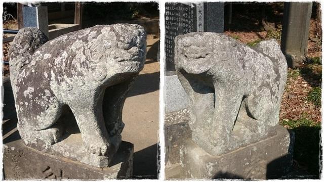 大前神社・狛犬1