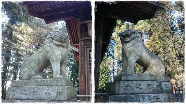大前神社・狛犬3