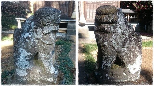 諏訪神社・狛犬