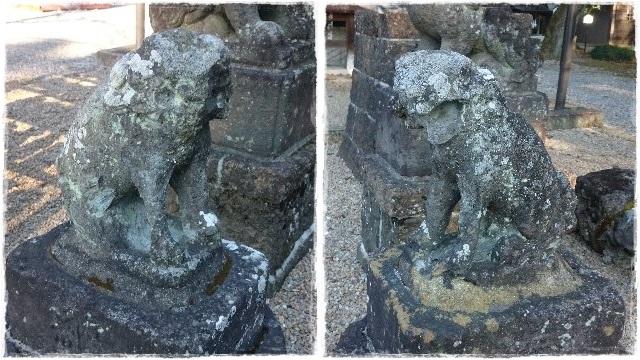 鷲宮神社・狛犬1