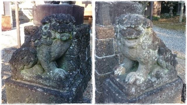 鷲宮神社・狛犬2