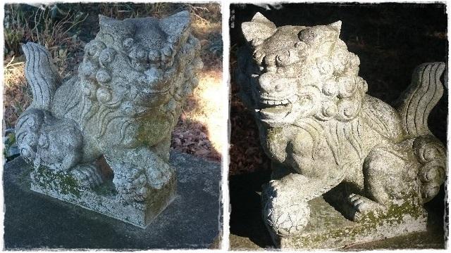 鷲宮神社・祖霊社狛犬