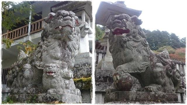 古峯神社・狛犬3