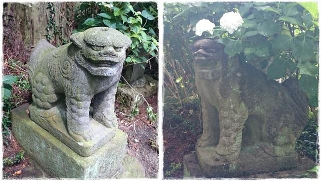 磯山神社狛犬2
