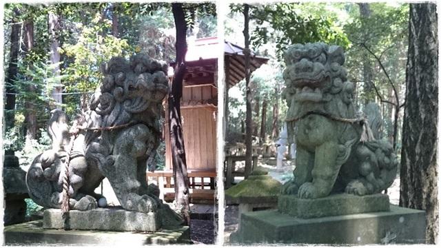 胸形神社狛犬