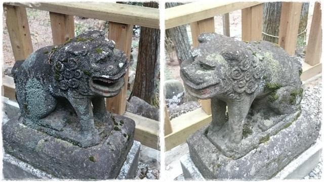 高靇神社狛犬2