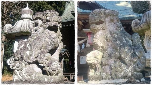 安房神社・狛犬1
