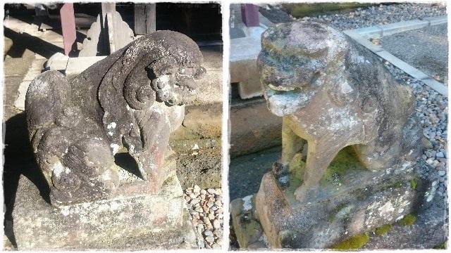 安房神社・狛犬2