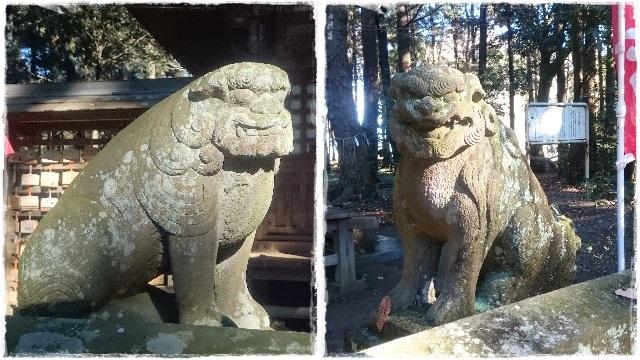 間々田八幡宮・狛犬3