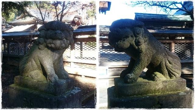 須賀神社・狛犬