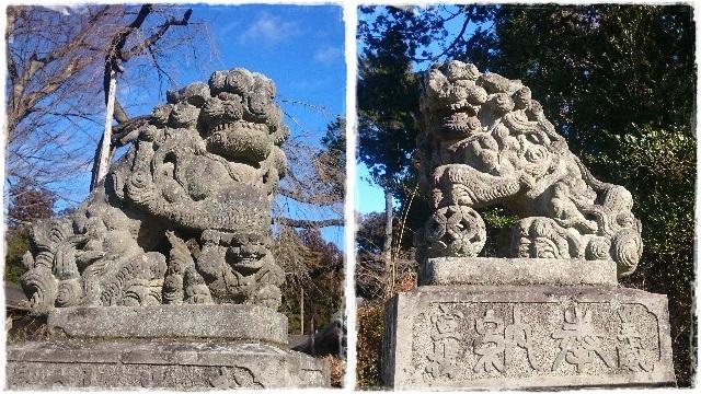 乃木神社・狛犬1