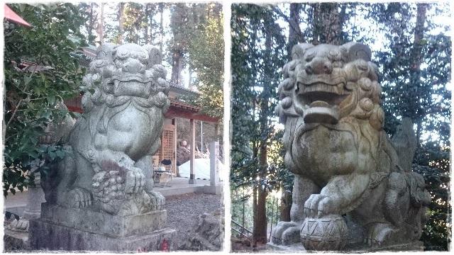 芳賀安住神社・狛犬1
