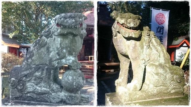 芳賀安住神社・狛犬2