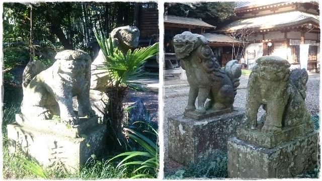 雄琴神社・狛犬