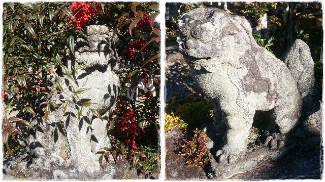 賀蘇山神社・狛犬1