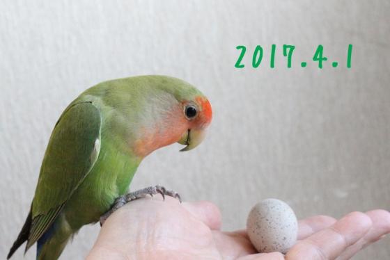 z3257.jpg