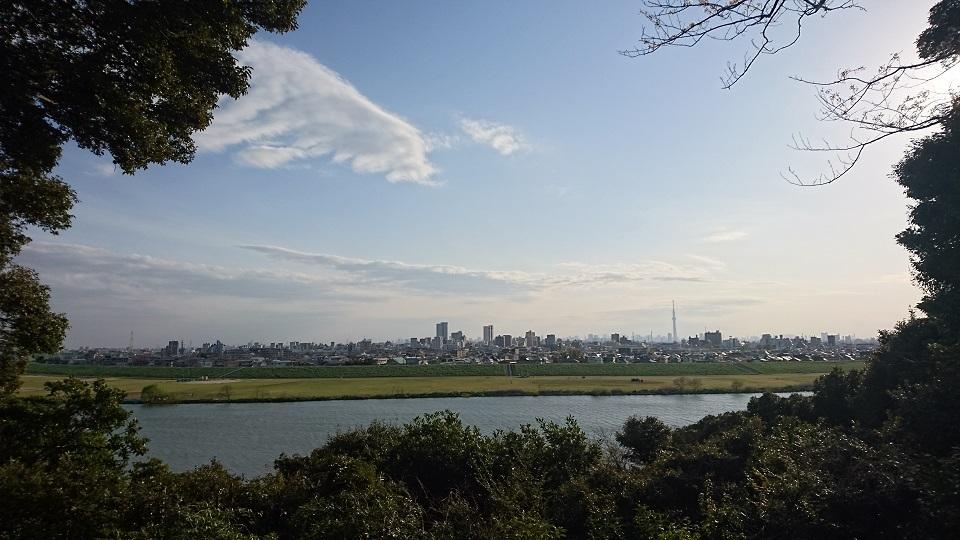 古墳横から江戸川を見下ろす