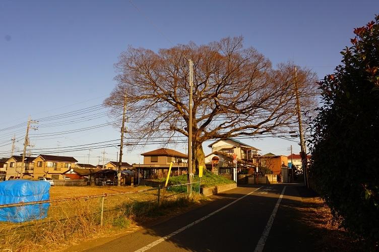 あきる野71号古墳