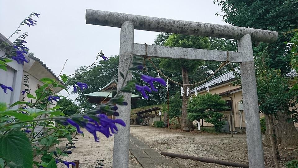 浦和神明神社鳥居