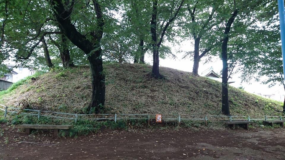 浦和神明神社古墳 北から