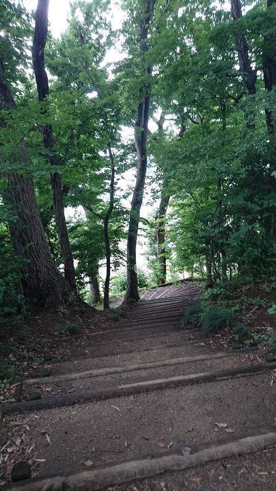 浦和本杢古墳台地下への階段