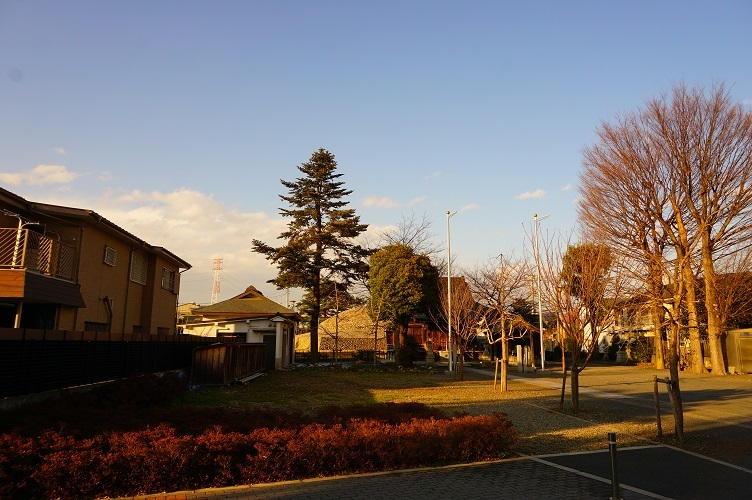 武蔵府中熊野神社古墳全景(南から)
