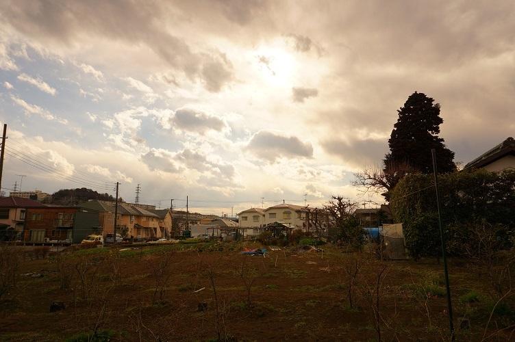 多摩市臼井塚古墳跡11