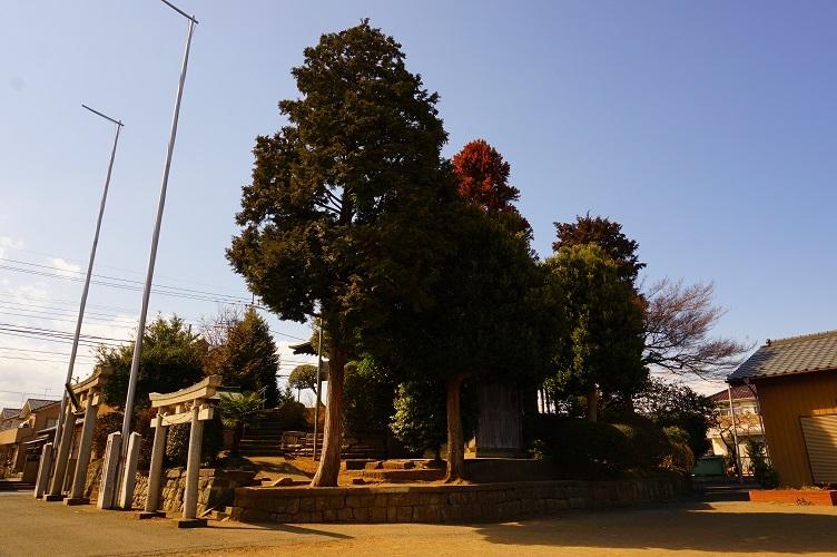 川越砂新田春日神社03