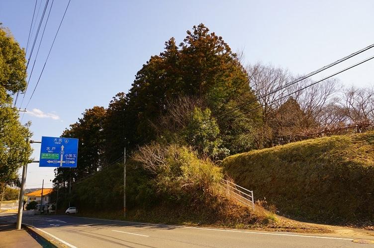 茨城町宝塚古墳01県道西から古墳の森を遠望