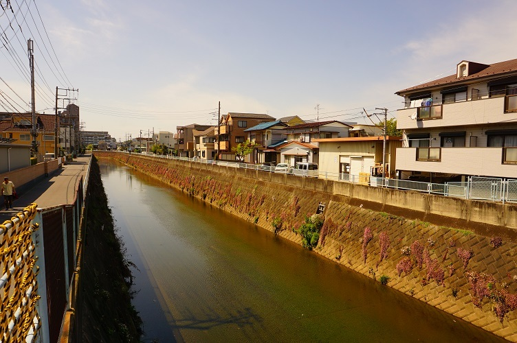 明津付近の矢上川